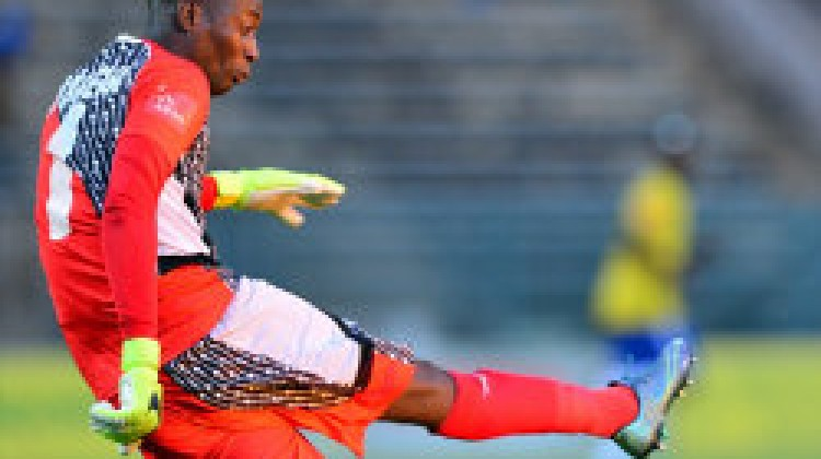 Golden Arrows withstood a late surge to hold Mamelodi Sundowns to a goalless draw