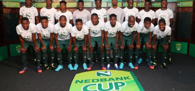 NEDBANK PROVIDES A PLATFORM FOR 18 YOUNG MEN TO JOIN PSL TEAMS