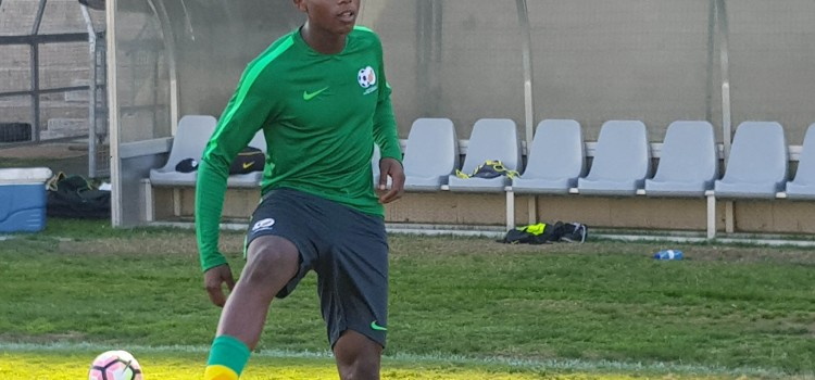 Lepasa motivated to shine under coach Notoane